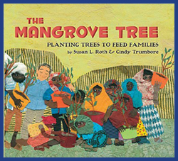 The mangrove tree